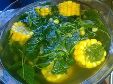 Manfaat sehat makan sayuran bayam setiap hari